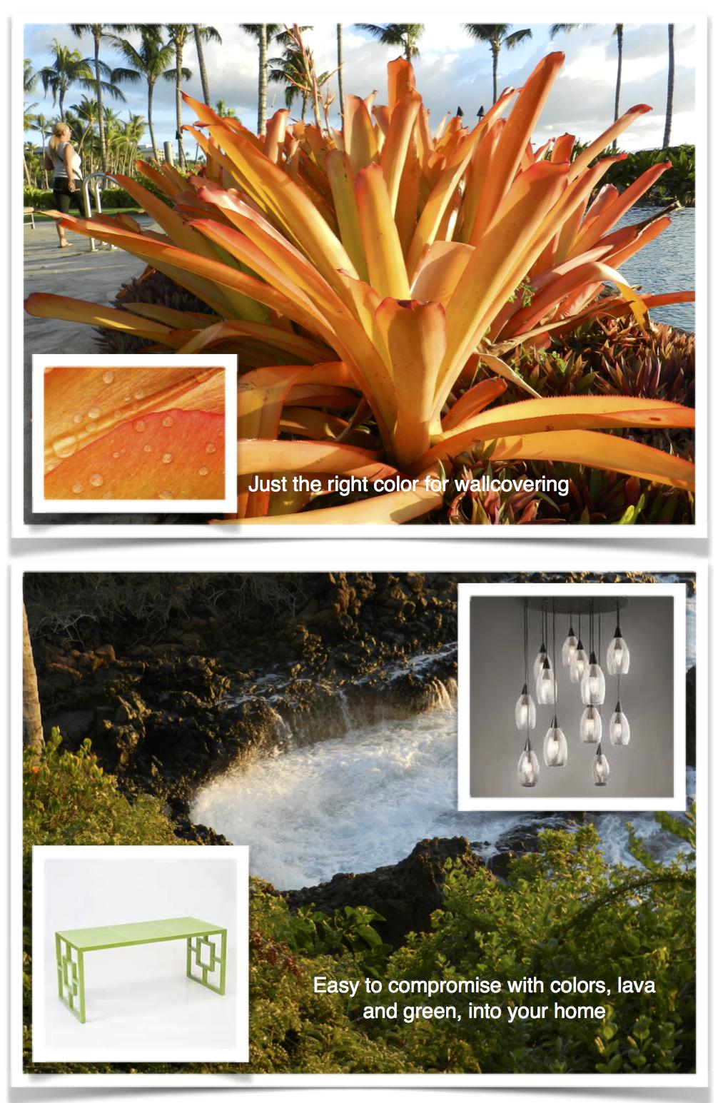 jeffrey design blog - Maui #3